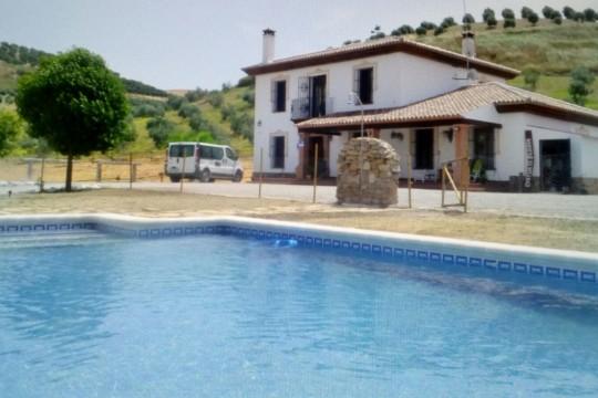 Long Term Rental, Equestrian Finca, Pool