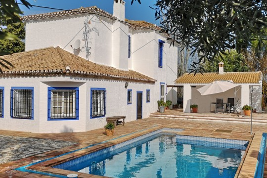 Imposing Country House, Studio, Pool, Olive Grove