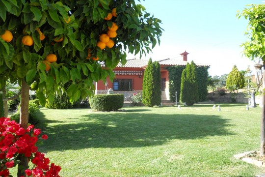 Long Term Rental – Country House, Pool, Guest House