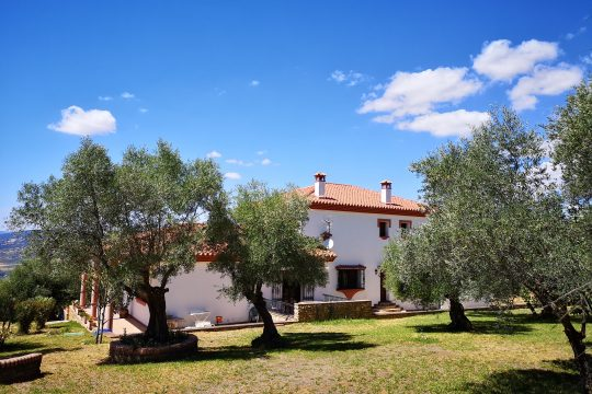 Elegant Villa, 6 Beds, 6 Baths, Gardens, Pool, Spectacular Views.