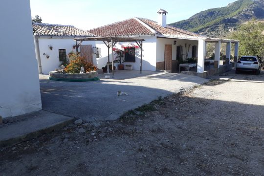 Finca, 2 houses, 240000m2 with Small Vineyard