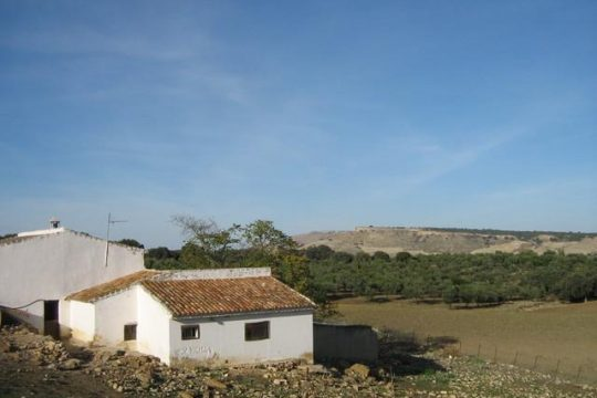 Country House, 5 Beds & 330.000m2 Land.